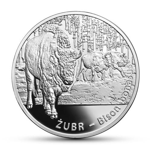 Moneta Kolekcjonerska 20 Zł żubr Sklep Numizmatyczny